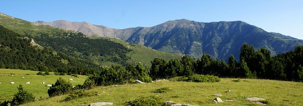 Sud Canigo pleine nature