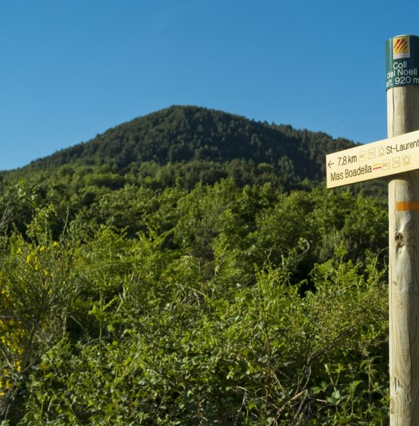Rando-promenade A la découverte de la Vallée Verte