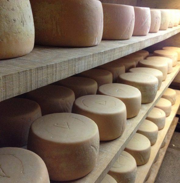 Fête des fromagers du Haut-Vallespir