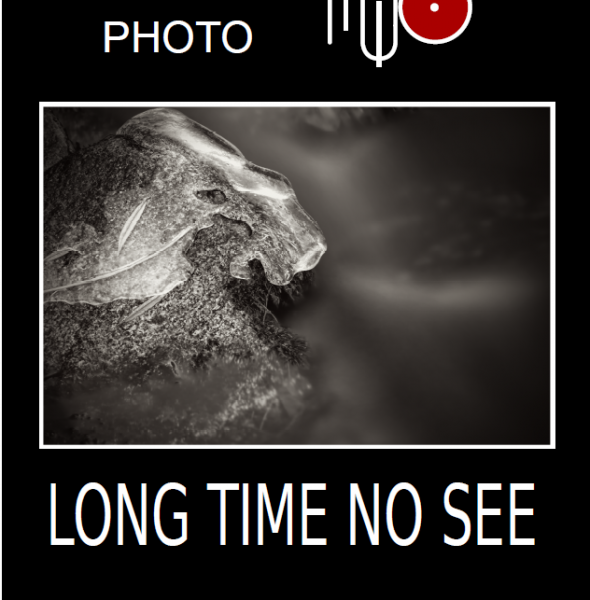 Exposition de photographies de Myo au Fort Lagarde
